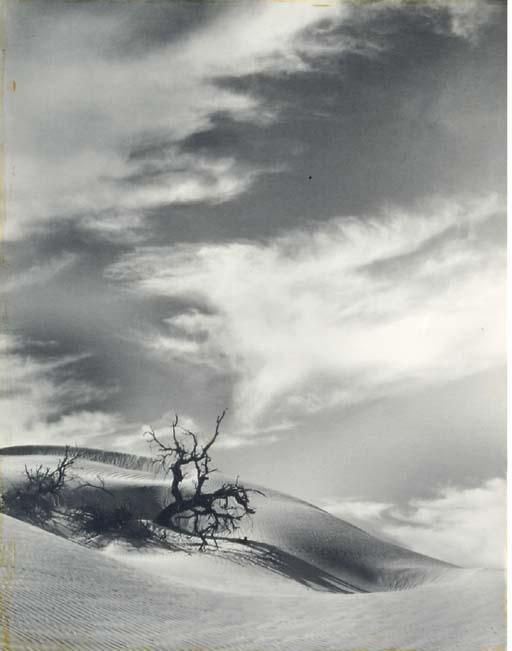 FLOYD B. EVANS (1890-1966)