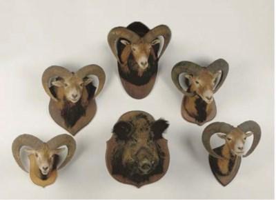 A GROUP OF FIVE STUFFED MOUFLO
