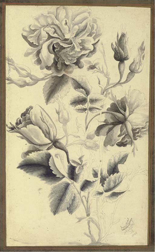 A GRISAILLE STUDY OF ROSES