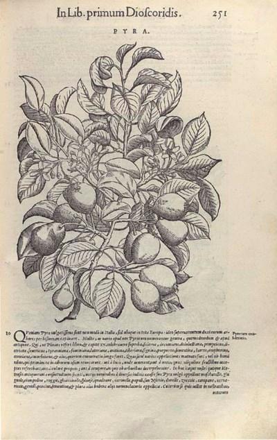 MATTIOLI, Pietro Andrea (1500/