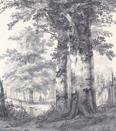 James de Rijk (Hilversum 1806-