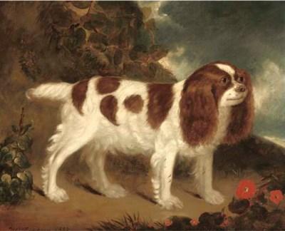 W. Thompson (British, c.1837)