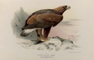 LILFORD, Thomas L. Powys, 4th