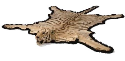A STUFFED AND MOUNTED TIGER SK