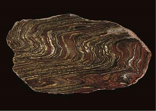 A fine tiger iron slice,