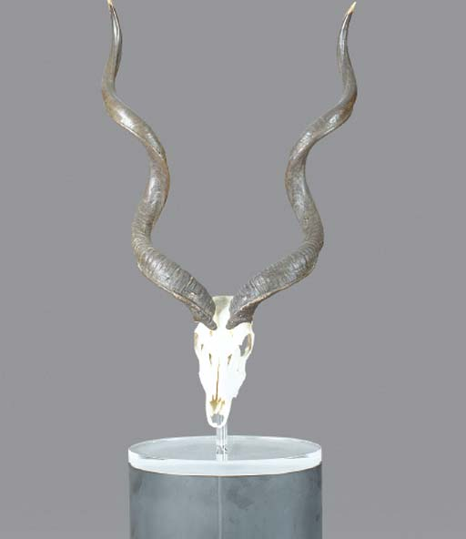 A KUDU SKULL MOUNTED ON A PLEX