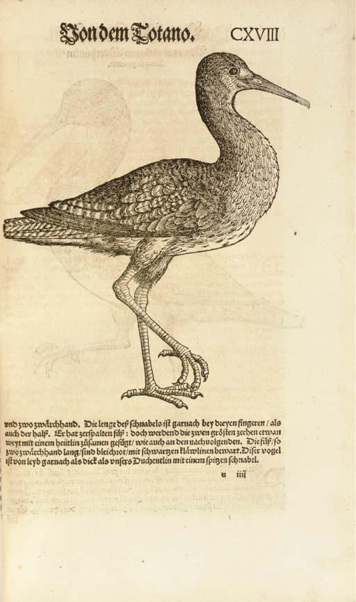GESNER, Conrad (1516-1565). Vo