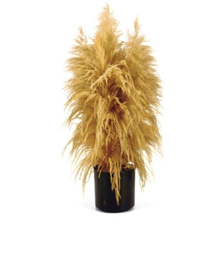 A BLACK VASE WITH PAMPAS GRASS