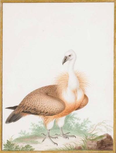 ROBERT, Nicolas (1614-1685). V