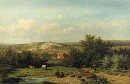 An extensive summer landscape
