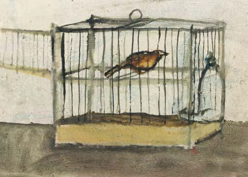 Vogelkooi - Birdcage