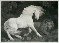 A Horse affrighted at a Lion (Lennox-Boyd 70)