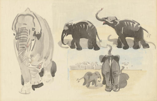 Studies of elephants