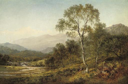 Birch trees on the hillside below Capel Curig