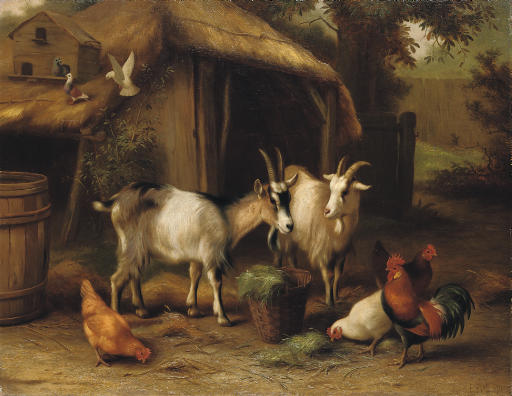 Goats, Chickens and Doves in a Farmyard