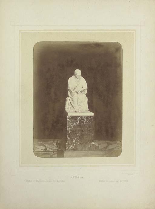 LINNAEUS, Carolus (1707-1778)-