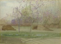 An Orchard in Blossom