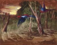 Parrots in the Bush