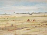 Wimmera Landscape