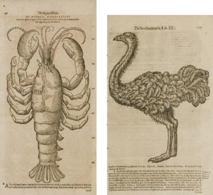 GESNER, Conrad (1516-65). Hist