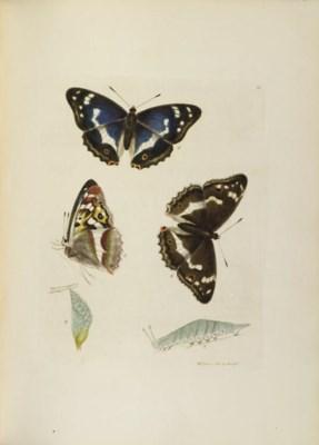 LEWIN, William (1747-1795). Th