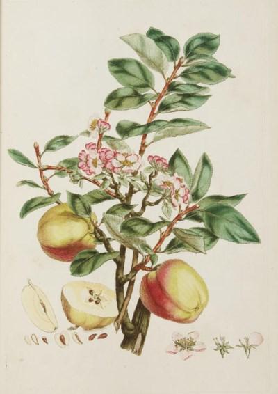 MILLER, John (1715-1780). Illu