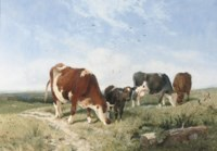Cattle on a summer's day
