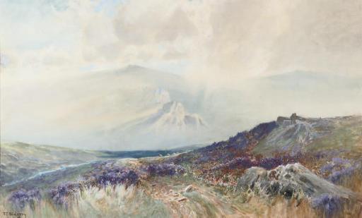 View across the misty moor