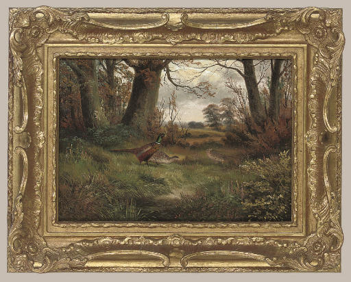 Pheasants by a woodland track