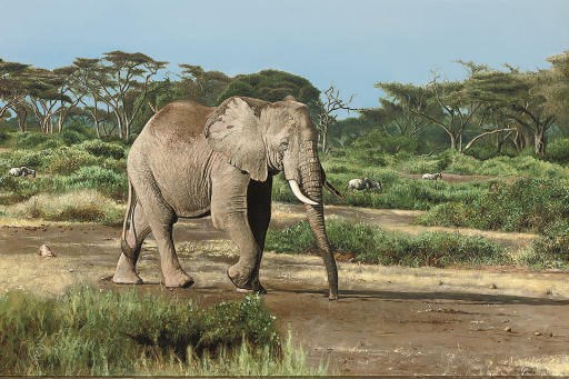Tony Karpinski (British, b.196