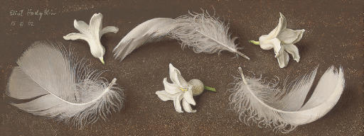 Feathers and Hyacinth Heads