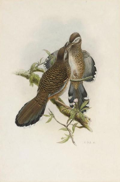 William Matthew Hart (1830-190