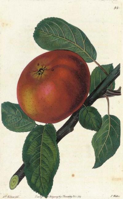[LINDLEY, John (1799-1865), ed