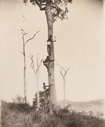 Photographer Unknown, circa 18