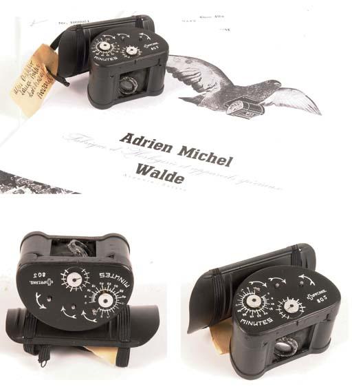 Pigeon camera Model A no. 803