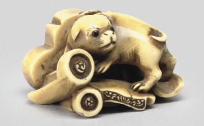 An ivory netsuke of a puppy, 1