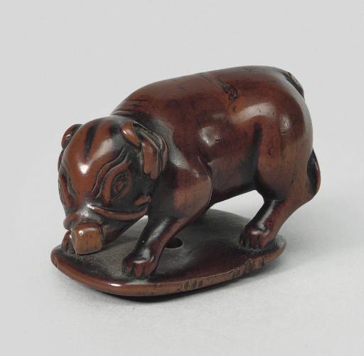 A wood model of a boar, late 1