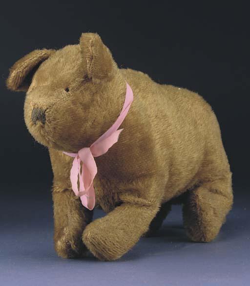 A British bear cub on all four