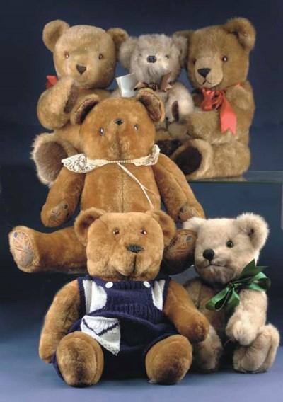 Modern bears