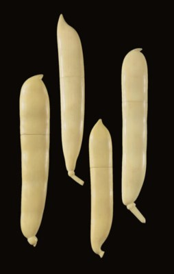 A GROUP OF PEAPOD NEEDLECASES