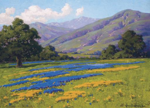 California Meadow