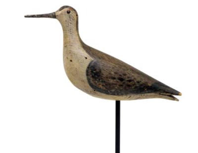 A LESSER YELLOWLEGS