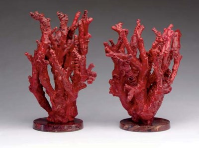 A pair of branches of Red Cora