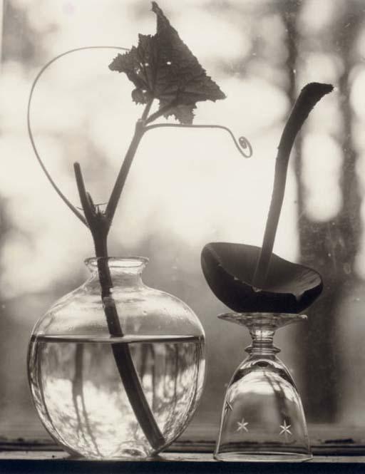 Untitled (Upside Down Mushroom), 1998