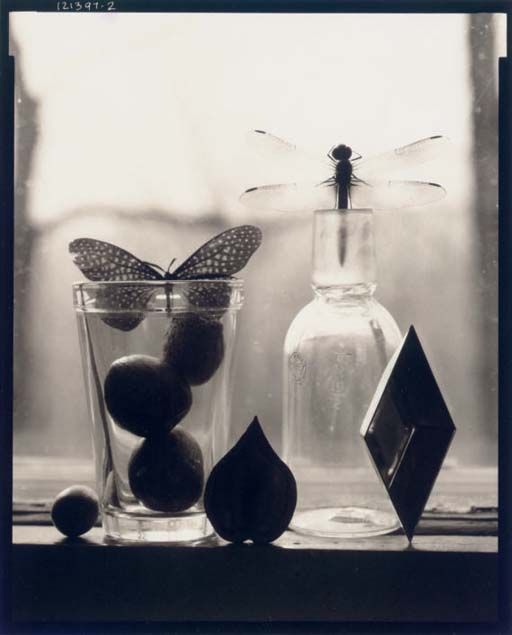 Untitled (Dragon & Butterfly), 1997