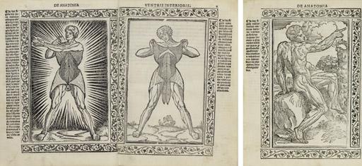BERENGARIO DA CARPI, Giacomo. Isagogae breves perlucide ac uberrimae in Anatomiam humani corporis. Bologna: Benedictus Hectoris, 15 July 1523.