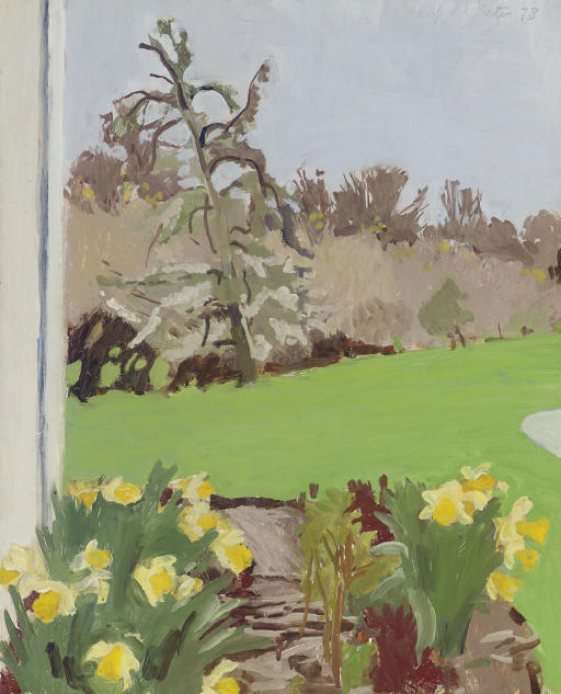 Daffodils and Pear Tree