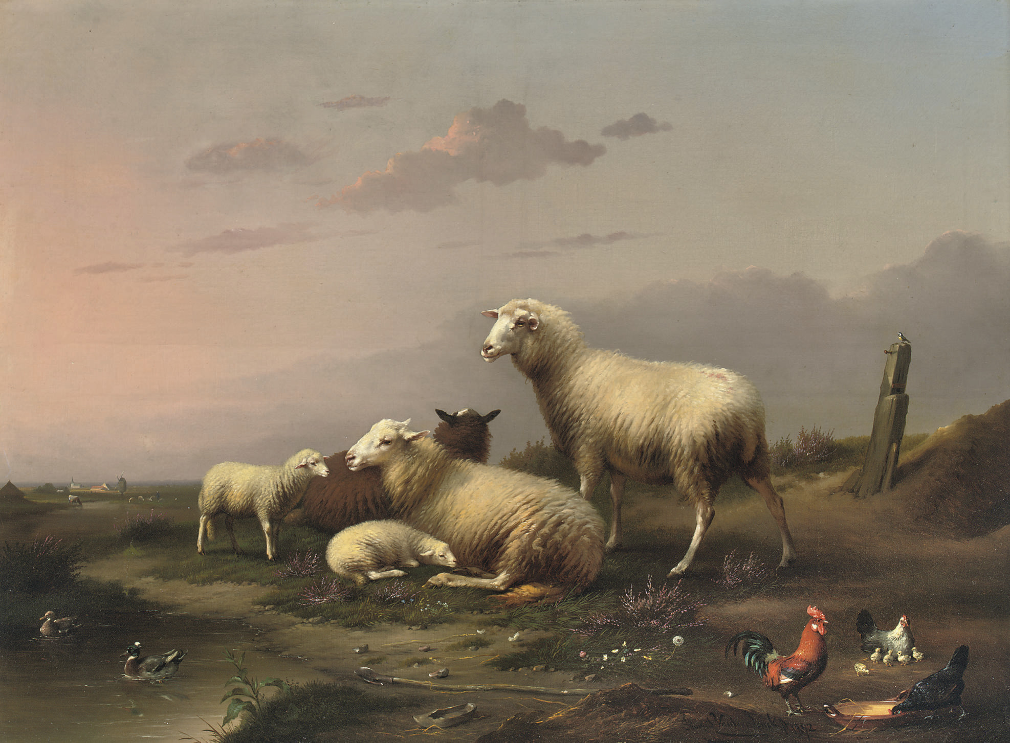 Sheep and poultry resting in the pasture