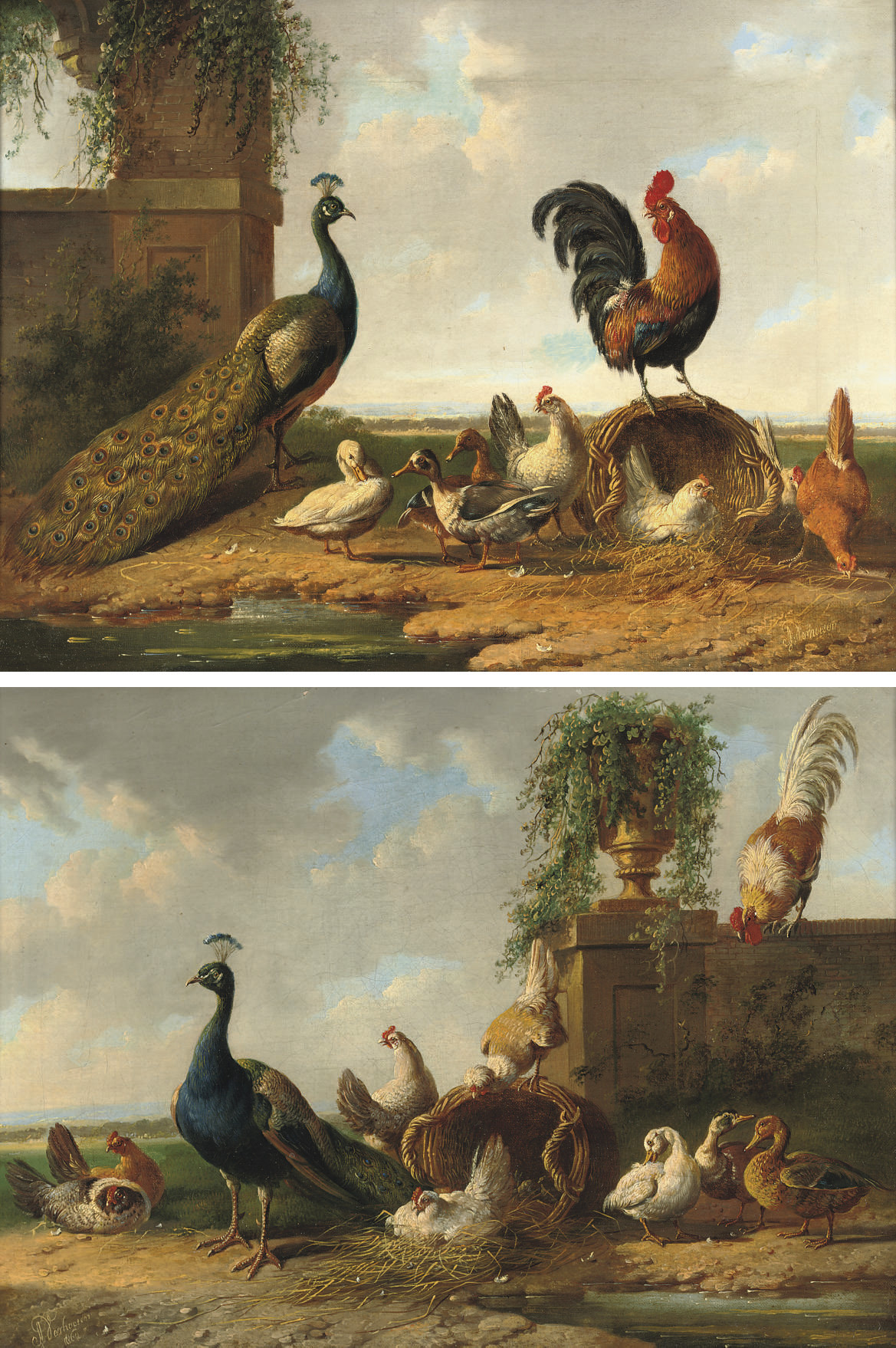 Poultry by a ruin