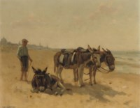 Strandezeltjes te Scheveningen: donkeys on the beach